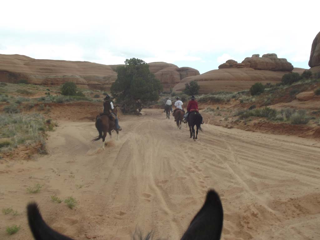 Ride Photos: Group #150 - Canyonlands BCH Ride at Bartlett & Pickle